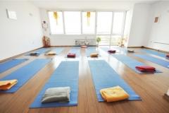 yoga_zala_freyle